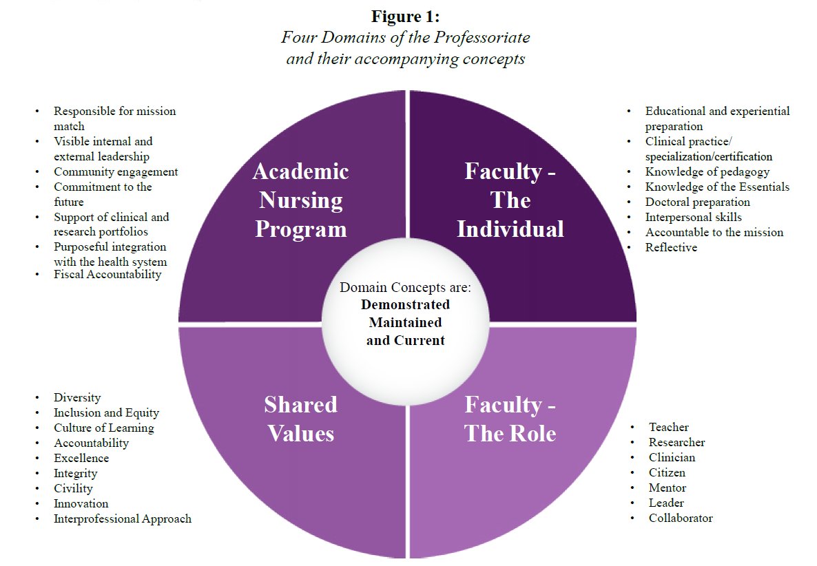 nursing values and beliefs statement