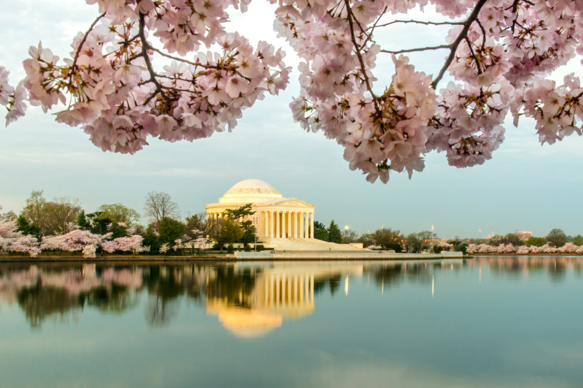 Image of the Jefferson Memorial in Washington, DC