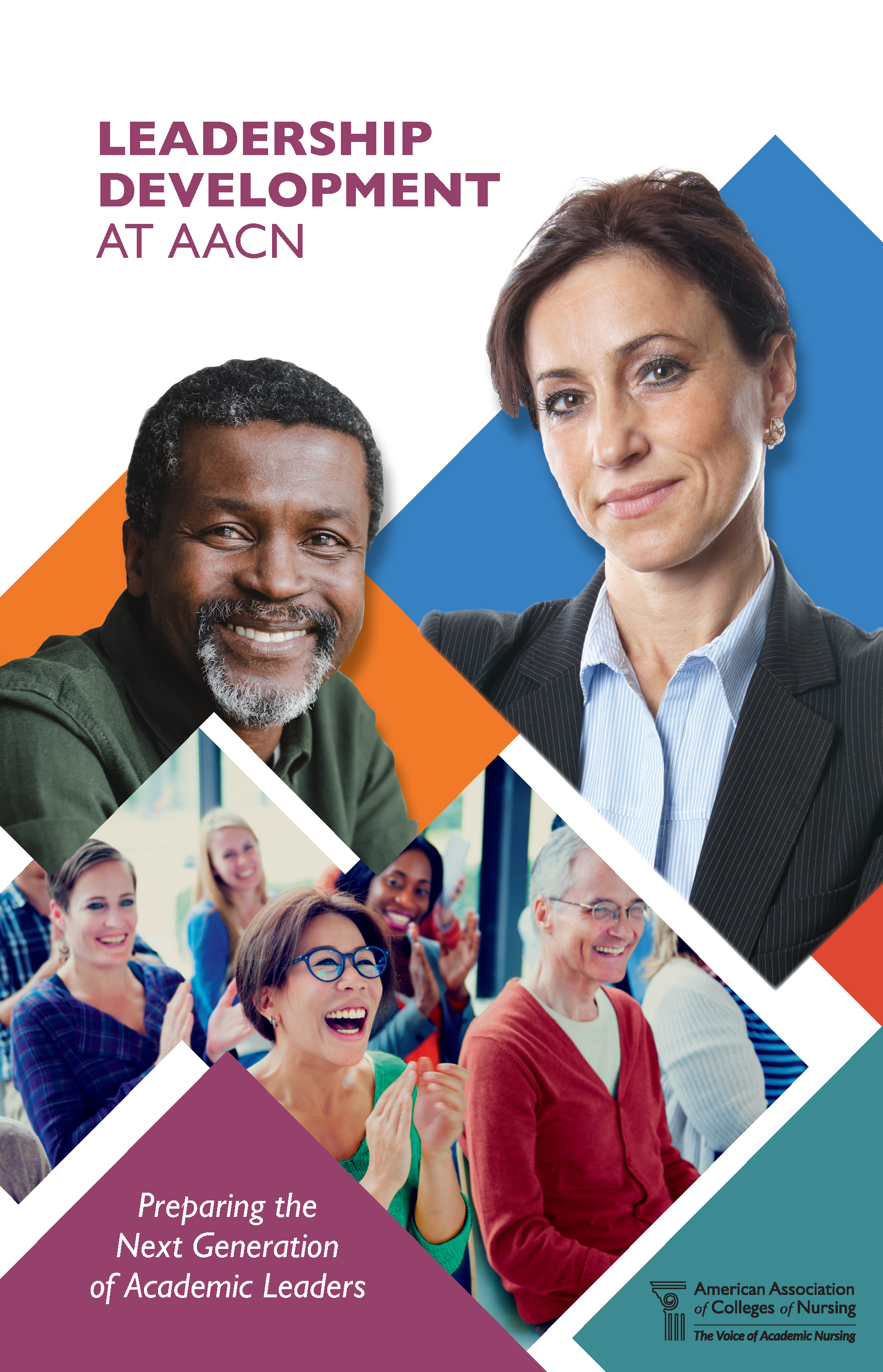 Image of Brochure Cover for Leadership Development At AACN - Preparing the Next Generation of Academic Leaders